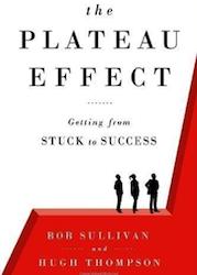 Plateau Effect LL Barkat Life Coach